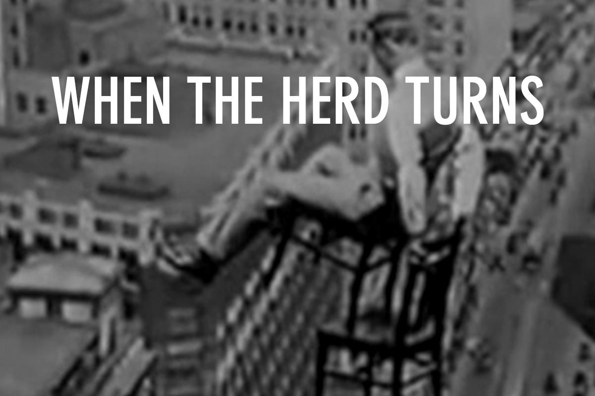 HerdTurns