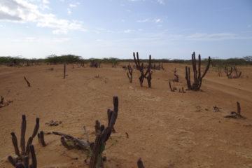 Desierto_de_la_Guajira